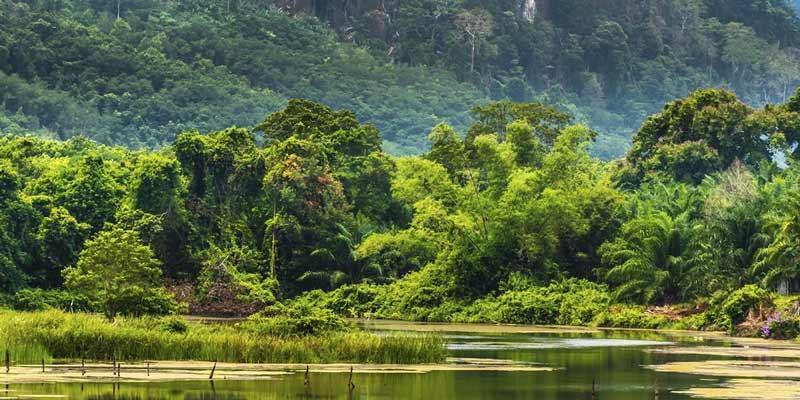 آشنایی با پارک کاویای تایلند