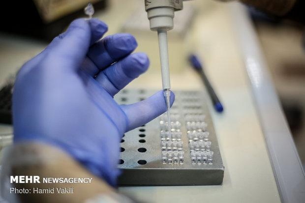 محقق دانشگاه علوم پزشکی مشهد پیروز به ثبت واکسن ویروس HTLV-1 شد