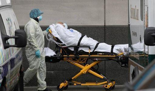 رکورد جدید کرونا در آمریکا ، 235 هزار مبتلا طی 24 ساعت