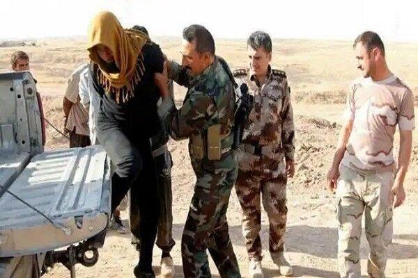 عراق از دستگیری حامی مالی اصلی داعش در دیالی خبر داد