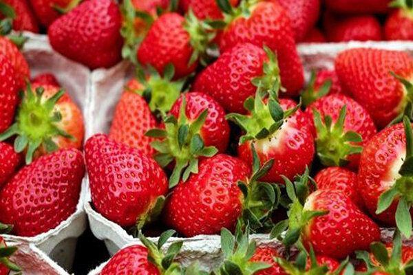 این میوه ضدسرطانی احتمال سکته مغزی را هم کاهش می دهد